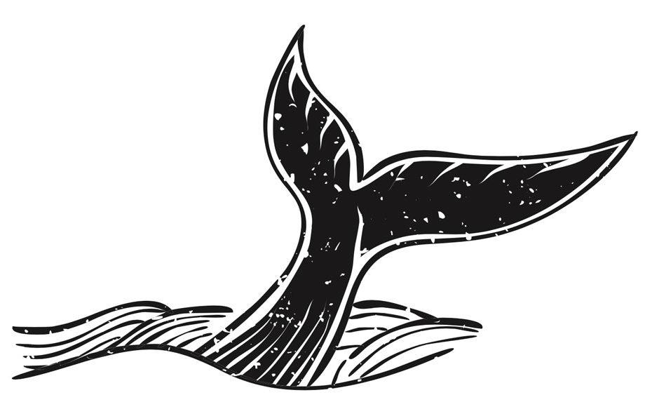 la-leggenda-della-balena
